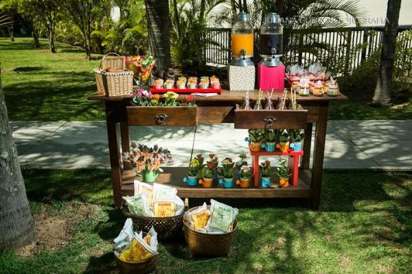 festa_picnic_7