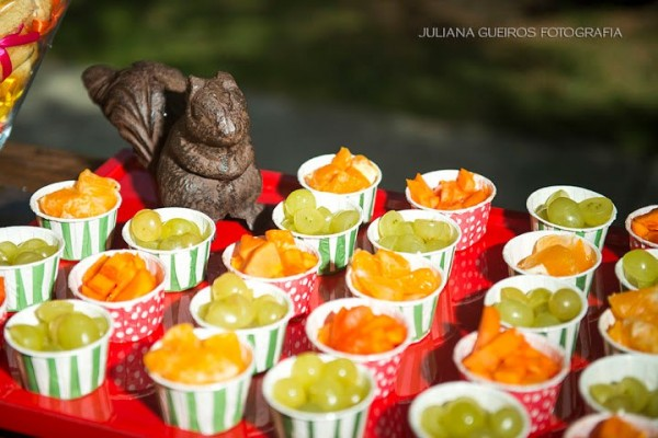 festa_picnic_8