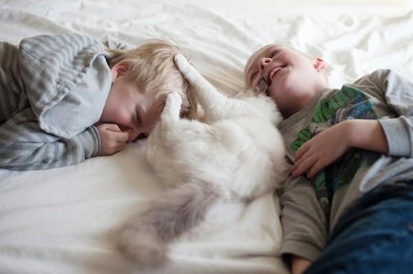 criança e gato 11