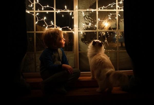 criança e gato 13