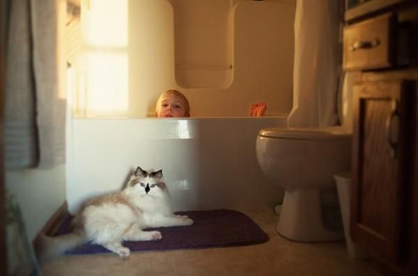 criança e gato 5