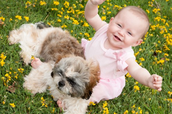 Happy Baby And A Puppy