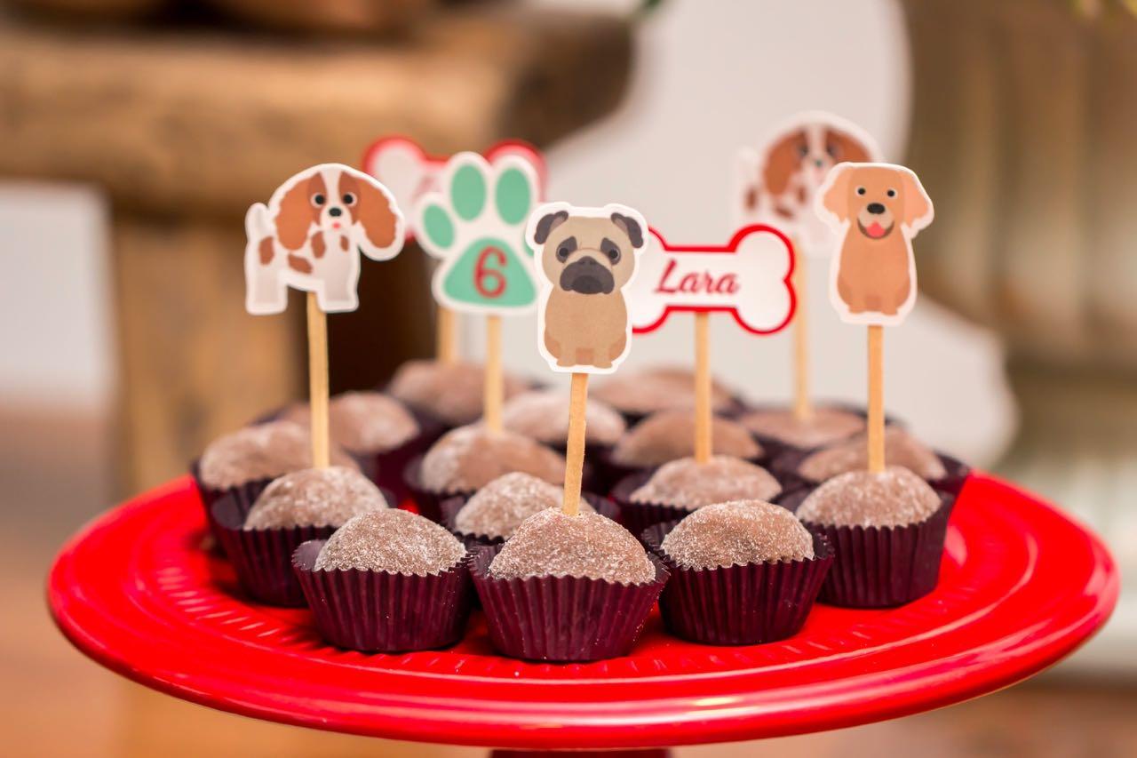 festa infantil cachorros30